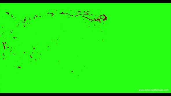 Hd Blood Burst Motion Blur Green Screen 5