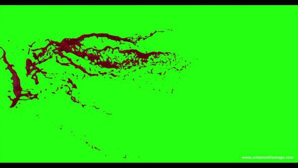 Hd Blood Burst Motion Blur Green Screen 54