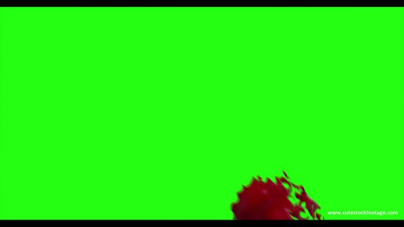 Hd Blood Burst Motion Blur Green Screen 76