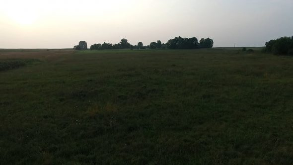 Low Flight Over The Meadow 10