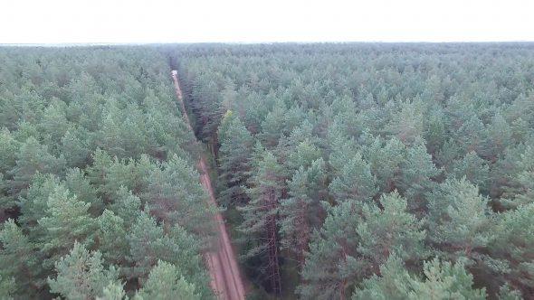 Flight Over The Forest Near Gravel Road 4