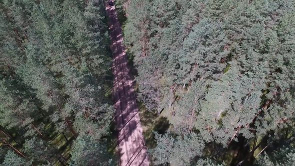 Landing Over The Forest And Gravel Road